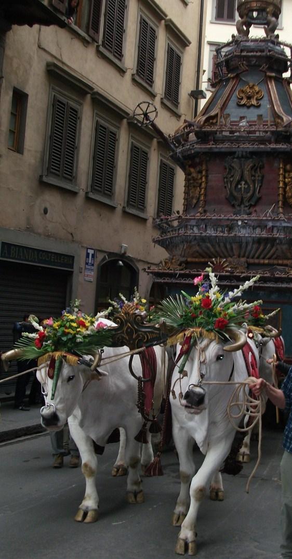 Firenze: Brindellone e Buoi Bianchi